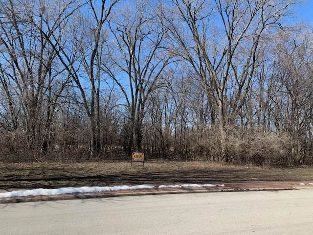 218 Stephen Lane, Joliet, IL 60431 (MLS #11010625) :: Littlefield Group