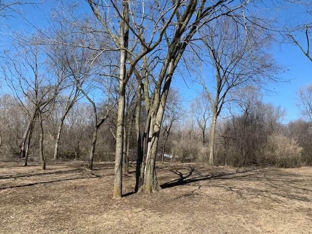 217 Stephen Lane, Joliet, IL 60431 (MLS #11010634) :: Littlefield Group