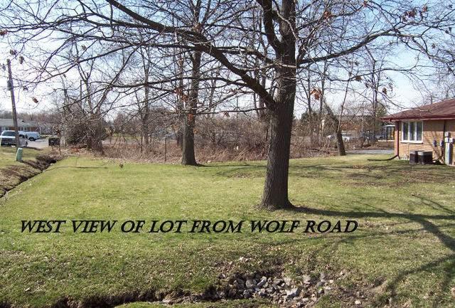 19650 S Wolf Road, Mokena, IL 60448 (MLS #11012936) :: RE/MAX IMPACT