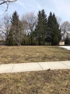 649 S Oak Street, Palatine, IL 60067 (MLS #11015189) :: Helen Oliveri Real Estate