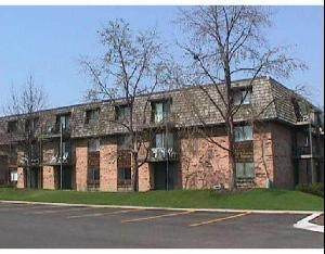 9 Oak Creek Drive #2908, Buffalo Grove, IL 60089 (MLS #11015855) :: The Dena Furlow Team - Keller Williams Realty