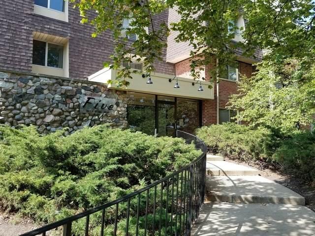 5 Villa Verde Drive #208, Buffalo Grove, IL 60089 (MLS #11018107) :: Littlefield Group