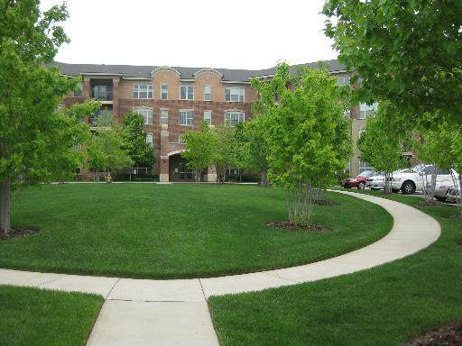 2700 Summit Drive #303, Glenview, IL 60025 (MLS #11018554) :: RE/MAX IMPACT