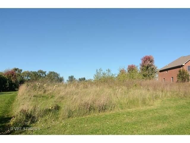 4 Rose Lane, Hawthorn Woods, IL 60047 (MLS #11020195) :: Helen Oliveri Real Estate
