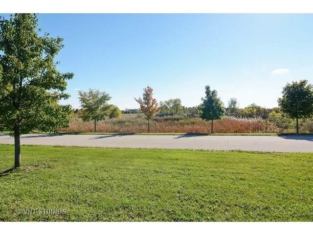 2 Olivers Way, Hawthorn Woods, IL 60047 (MLS #11020196) :: Helen Oliveri Real Estate