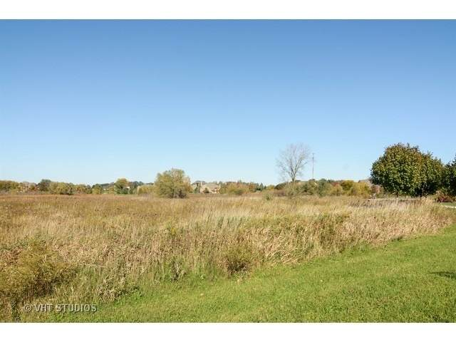 103 Governors Way, Hawthorn Woods, IL 60047 (MLS #11020205) :: Helen Oliveri Real Estate