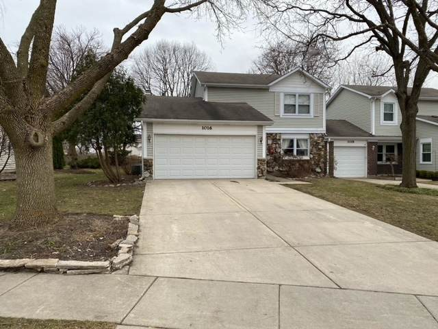 1016 Colony Lake Drive, Schaumburg, IL 60194 (MLS #11021215) :: The Dena Furlow Team - Keller Williams Realty