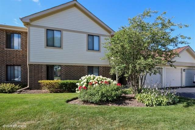 823 E Coach Road #6, Palatine, IL 60074 (MLS #11022698) :: RE/MAX IMPACT
