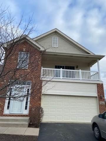 30149 Autumn Drive, Beecher, IL 60401 (MLS #11022912) :: Helen Oliveri Real Estate