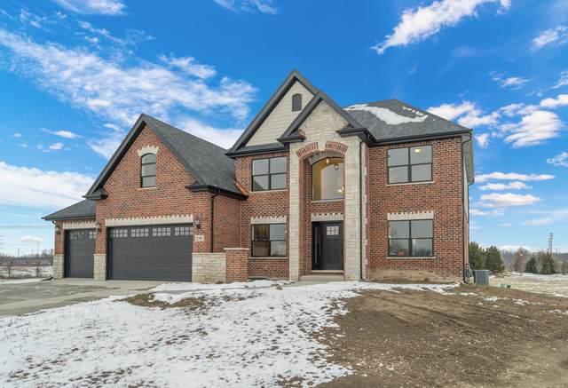 8464 Dungarvan Road, Frankfort, IL 60423 (MLS #11023831) :: Helen Oliveri Real Estate