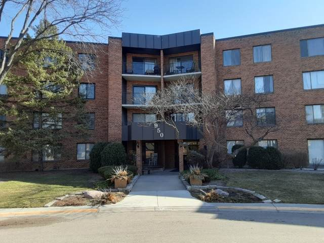 950 E Wilmette Road #327, Palatine, IL 60074 (MLS #11024701) :: The Dena Furlow Team - Keller Williams Realty