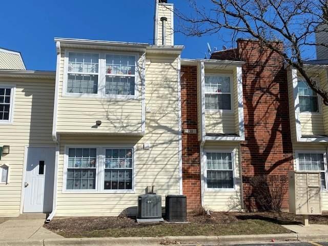 1251 Wyndham Drive #203, Palatine, IL 60074 (MLS #11027146) :: Helen Oliveri Real Estate