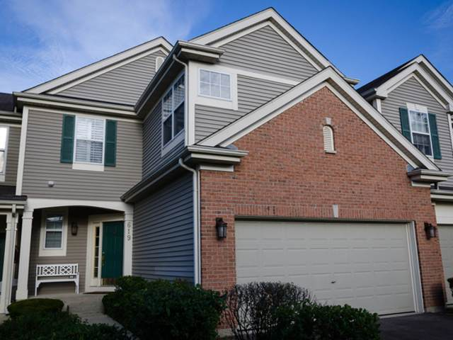 619 Creekside Circle, Gurnee, IL 60031 (MLS #11028277) :: The Dena Furlow Team - Keller Williams Realty