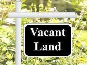 282 Cornell Avenue, Des Plaines, IL 60016 (MLS #11029356) :: Helen Oliveri Real Estate