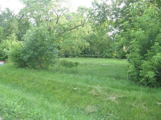 17222 Lathrop Avenue, East Hazel Crest, IL 60429 (MLS #11029419) :: Helen Oliveri Real Estate