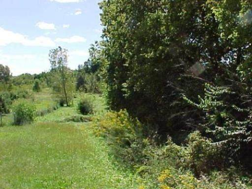 0000 Route 71 Highway - Photo 1