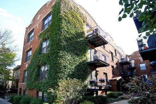 1653 W Addison Street 3B, Chicago, IL 60613 (MLS #11030179) :: Littlefield Group