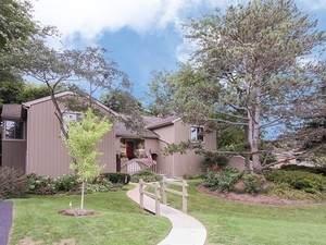 347-B N Hickory Lane C-445, Lake Barrington, IL 60010 (MLS #11030794) :: Helen Oliveri Real Estate