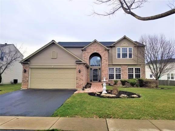 1651 Apricot Street, Bolingbrook, IL 60490 (MLS #11031438) :: Helen Oliveri Real Estate