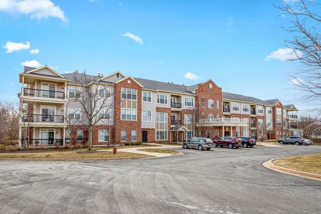 12950 Meadow View Court #201, Huntley, IL 60142 (MLS #11031675) :: Lewke Partners