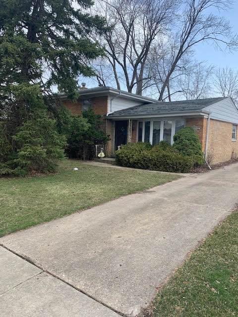4436 N Redwood Drive, Norridge, IL 60706 (MLS #11033325) :: The Dena Furlow Team - Keller Williams Realty
