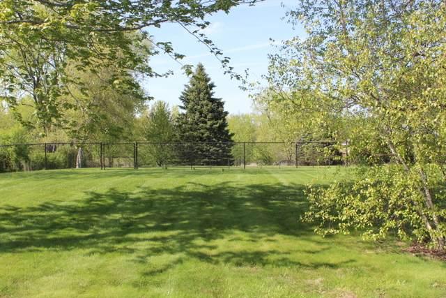 690 W Echo Lane, Palatine, IL 60067 (MLS #11034868) :: Helen Oliveri Real Estate