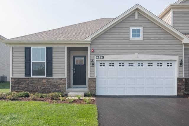 1172 Hawk Hollow Drive, Yorkville, IL 60560 (MLS #11035077) :: The Dena Furlow Team - Keller Williams Realty