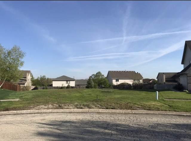 2941 Doxbury Court, New Lenox, IL 60451 (MLS #11036092) :: RE/MAX IMPACT