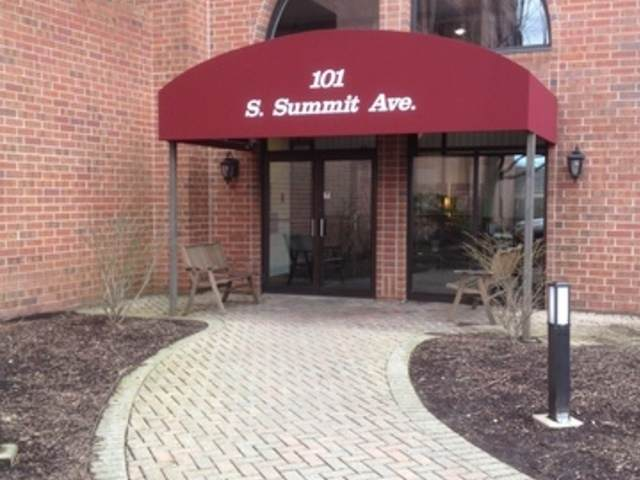 101 Summit Avenue #205, Park Ridge, IL 60068 (MLS #11038873) :: RE/MAX IMPACT