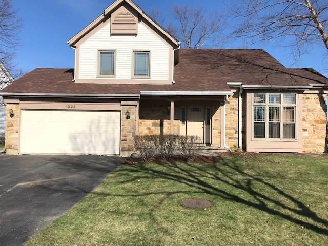 1228 Thorndale Lane, Lake Zurich, IL 60047 (MLS #11041515) :: Helen Oliveri Real Estate
