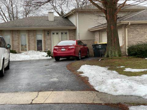 Lansing, IL 60438 :: Suburban Life Realty