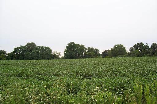 17023 Stateline Road - Photo 1
