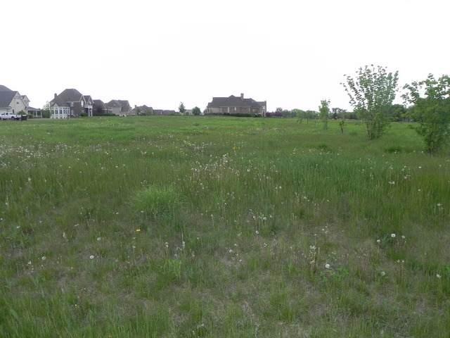 Lot 14 Blackberry Crossing, Elburn, IL 60119 (MLS #11044214) :: O'Neil Property Group