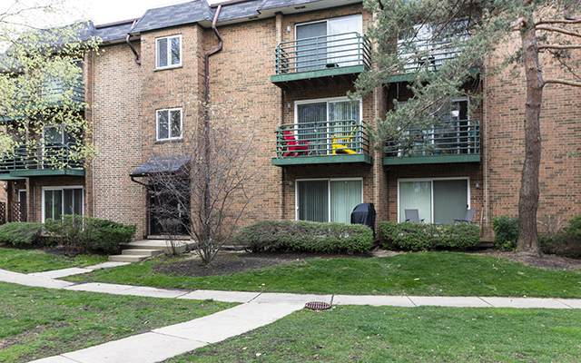 2636 Pirates Cove Boulevard #4, Schaumburg, IL 60173 (MLS #11046812) :: Littlefield Group