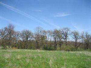 63 Stonewall Drive, Millbrook, IL 60536 (MLS #11047508) :: Helen Oliveri Real Estate