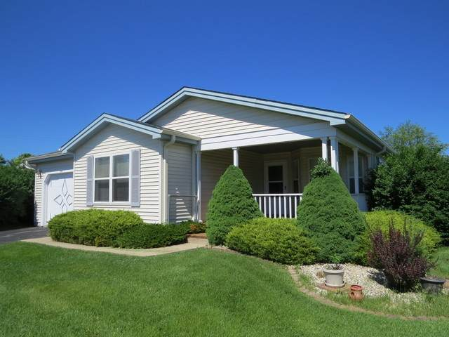 333 Palomino Court, Grayslake, IL 60030 (MLS #11049115) :: Helen Oliveri Real Estate
