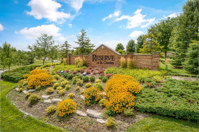 4580 Greywood Drive, St. Charles, IL 60174 (MLS #11050750) :: Schoon Family Group
