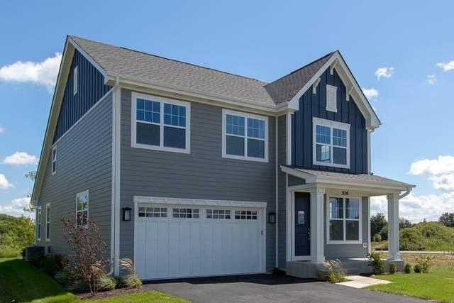 106 Roman Lane, Hawthorn Woods, IL 60047 (MLS #11053448) :: Helen Oliveri Real Estate