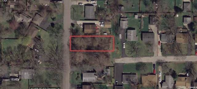0 E Lakeview Avenue, Round Lake Beach, IL 60073 (MLS #11053490) :: O'Neil Property Group
