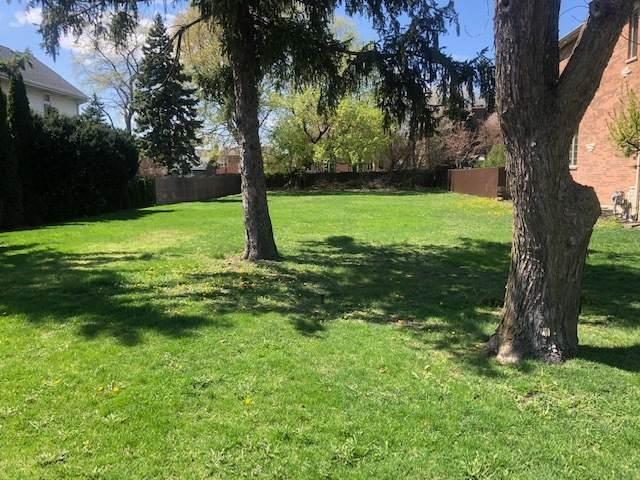 2268 Douglas Street, Des Plaines, IL 60018 (MLS #11053592) :: O'Neil Property Group