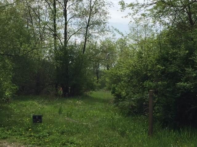 2207 W Wright Road, Mchenry, IL 60050 (MLS #11055348) :: Lewke Partners
