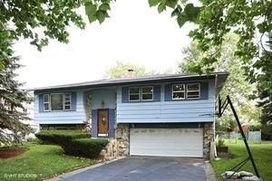 2040 Arbor Vitae Drive, Hanover Park, IL 60133 (MLS #11055989) :: Ryan Dallas Real Estate