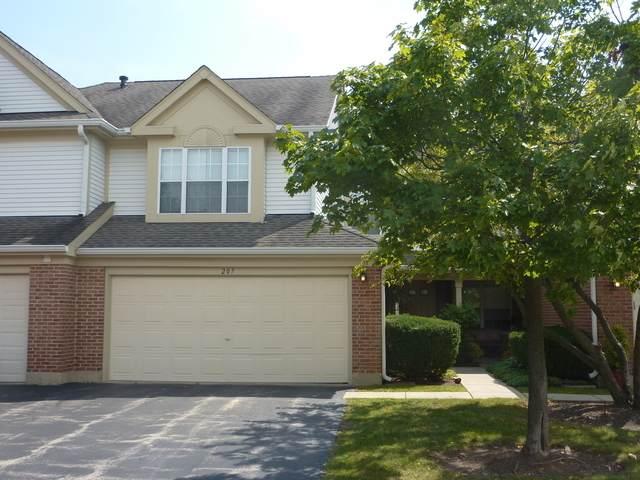 207 Rob Roy Court, Schaumburg, IL 60194 (MLS #11056036) :: Ryan Dallas Real Estate