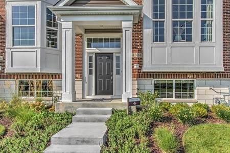 4304 Monroe Lot#1.06 Avenue, Naperville, IL 60564 (MLS #11056837) :: RE/MAX Next