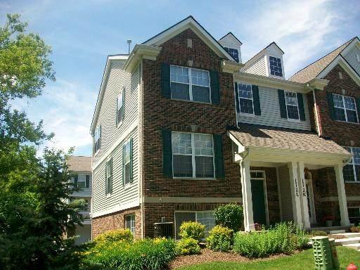 172 N East River Road L, Des Plaines, IL 60016 (MLS #11057923) :: Helen Oliveri Real Estate