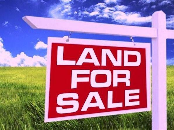 1708 Whispering Ridge Drive, Mchenry, IL 60051 (MLS #11059590) :: Lewke Partners