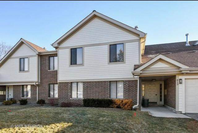 813 E Carriage Lane #7, Palatine, IL 60074 (MLS #11059641) :: RE/MAX IMPACT