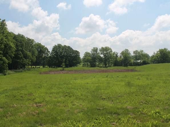 LOT 4 S Bowgren Circle, Elburn, IL 60119 (MLS #11060259) :: O'Neil Property Group