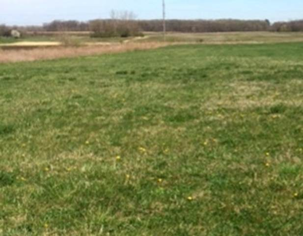 vacant land W Rt 113, Custer Park, IL 60481 (MLS #11062584) :: Helen Oliveri Real Estate
