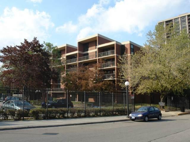 3041 S Michigan Avenue #309, Chicago, IL 60616 (MLS #11063248) :: Helen Oliveri Real Estate